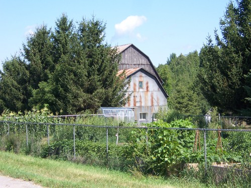 kitchen garden and the outbuildings